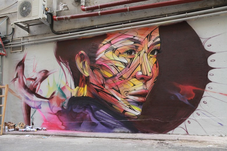 hopare-dolphins-woc